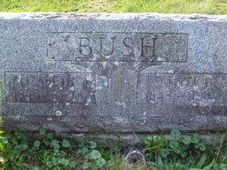 Elizabeth Abigail <I>Oliver</I> Bush