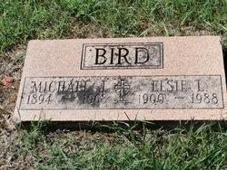 Michael J Bird