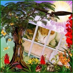 """""""The Shelter Cat"""" Stevie"""