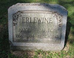 John Roe Earlewine