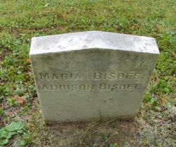 Addison Bisbee