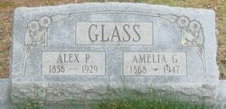 Alex P. Glass