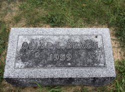 Olive T Beach