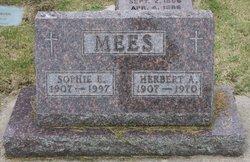 Herbert Albert Mees
