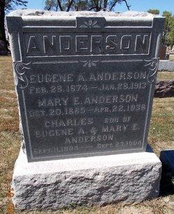Mary Emma <I>Wendt</I> Anderson
