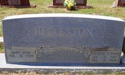 George Turner Helveston