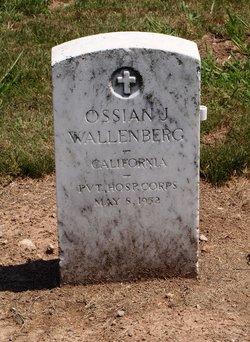 Ossian J Wallenberg