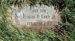Elburn Darwin Lunt, Jr