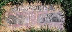 Sarah Ann <I>Bunting</I> Bosworth