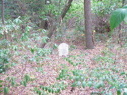 Watson Cemetery (Ashpole Swamp) in South Carolina - Find A Grave