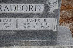 James R. Bradford