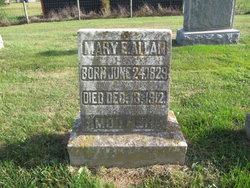 Mary Elizabeth <I>Sibley</I> Allan