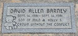 David Allen Barney