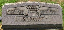 Sarah E. <I>McCullough</I> Sprout