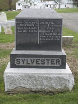 Lucinda D. <I>Gregory</I> Sylvester