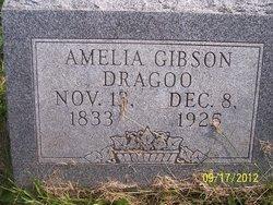 Amelia <I>Gibson</I> Dragoo