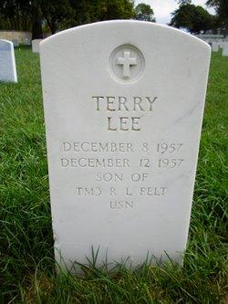 Terry Lee Felt