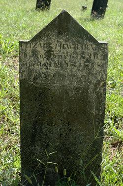 Elizabeth W Barnes