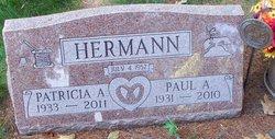 Patricia A Hermann