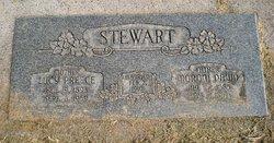 Moroni David Stewart