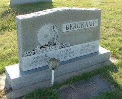 Anna K Bergkamp