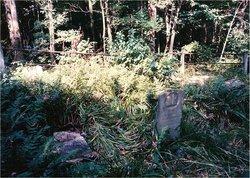Johns(Sem K.) Cemetery
