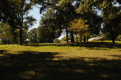 Pleasant Grove Cemetery African American
