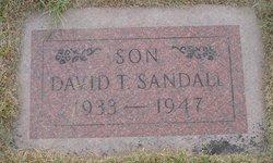 David Terrill Sandall