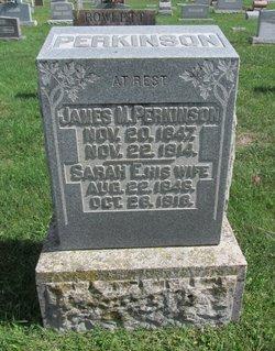Sarah Ellen <I>Barnes</I> Perkinson