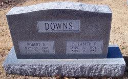 Robert Bingham Downs