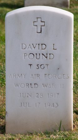 David L Pound