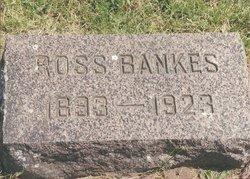 Ross Bankes