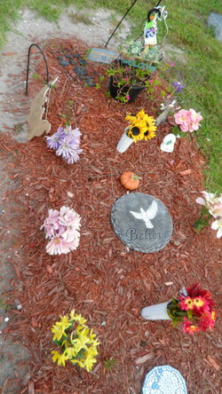 """Jesse """"Tiny"""" Watford (1925-2011) - Find A Grave Memorial"""