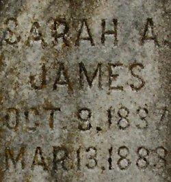 Sarah Ann <I>Presson</I> James