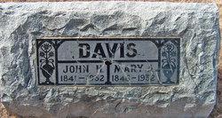 Mary Ann <I>Willis</I> Davis