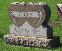 Edward Deshler Fluck, Jr