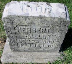 Herbert Balluff