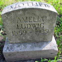 Amelia Ludwig