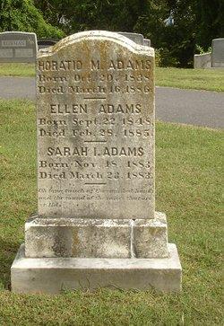 Horatio M Adams
