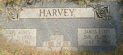 Mary Agnes <I>Nelson</I> Harvey