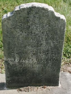 Sarah <I>Hewitt</I> Cline