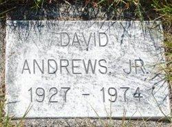David Allen Andrews