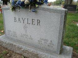 David B Bayler