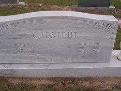 Austin McNeil Chestnut