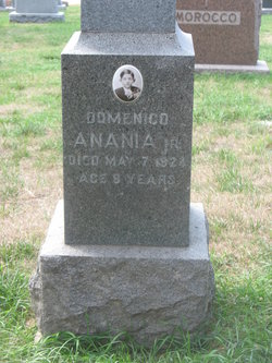 Domenico Anania, Jr