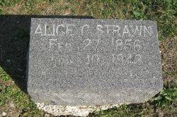 Alice Minerva <I>Crump</I> Strawn