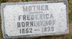 Frederica <I>Lohuis</I> Borninkhof