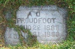 Alice Esella Richarson Proudfoot