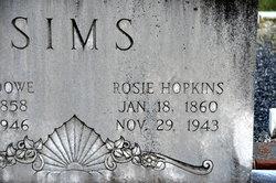 Rosie Lucindy <I>Hopkins</I> Sims