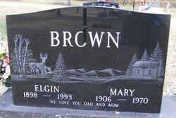 Elgin Brown